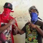 bloods-crips
